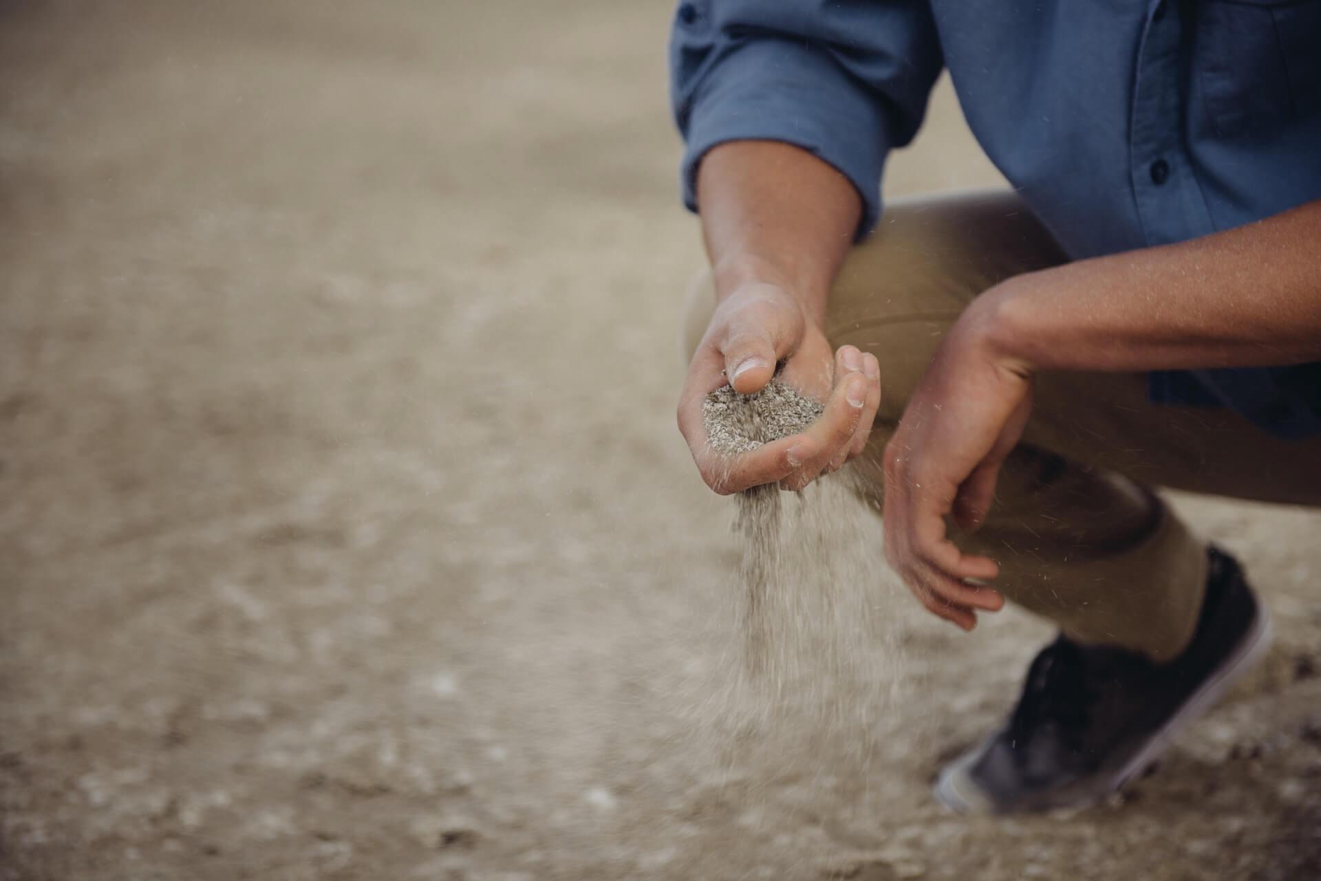 有機農業向慣行農業靠攏了嗎?
