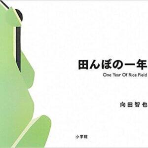 《里山的一年繪本1:水稻田的一年》田んぼの一年